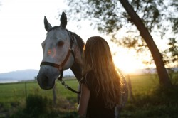 Equine therapy introduces horses into rehab as a way of teaching responsibility and exercise.